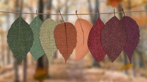 Vivienne Andersen Realtor Autumn Leaves